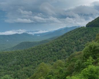 Pisgah Inn view